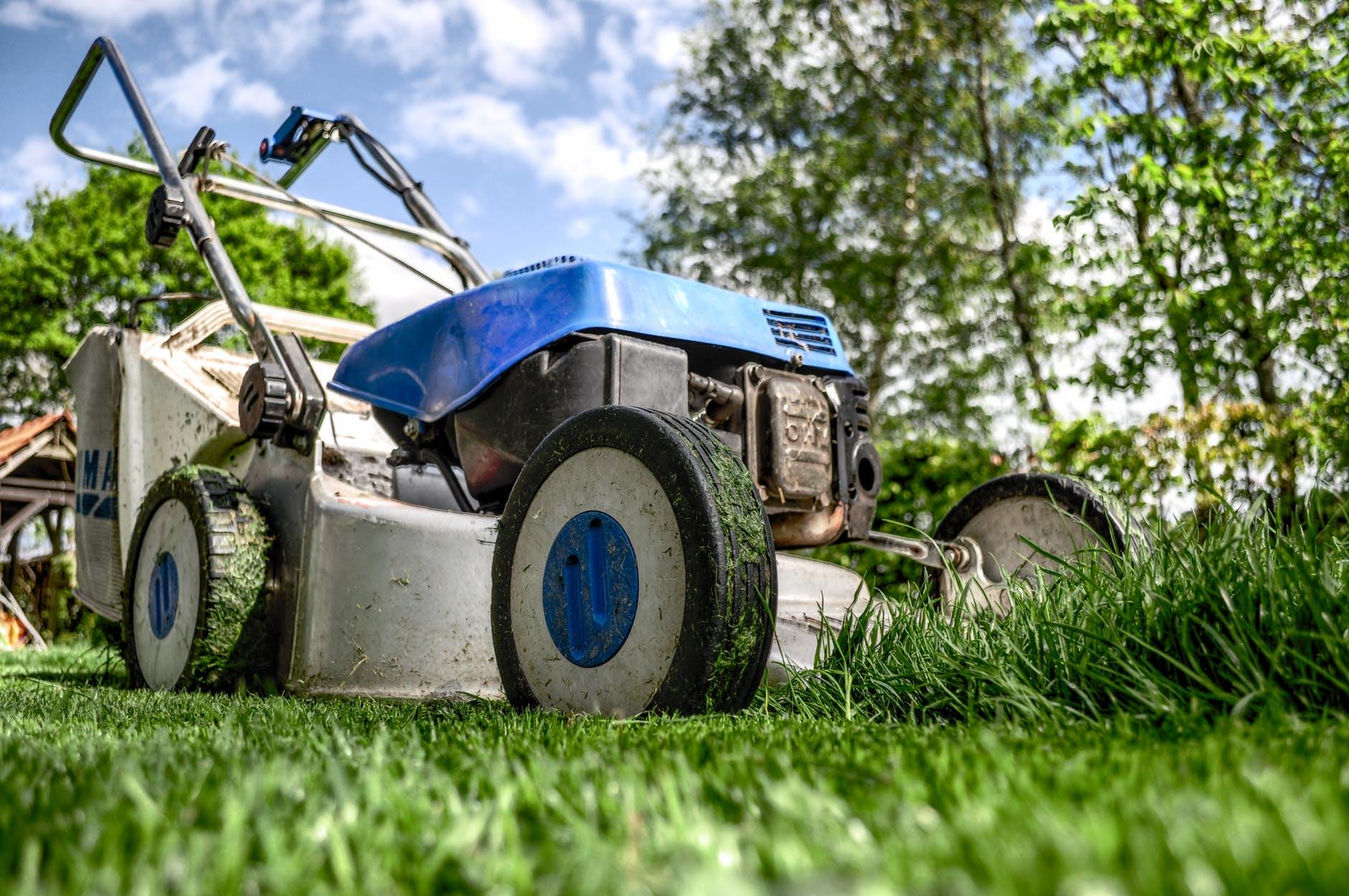 כמה באמת עולה להתקין דשא סינטטי בבית?